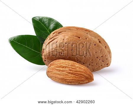 Dried almonds with leaves