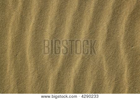Wavy Sea Shore Sand Texture On Sunshine