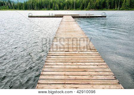 Empty Swimming Island