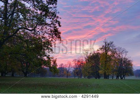 Scenic Sunrise