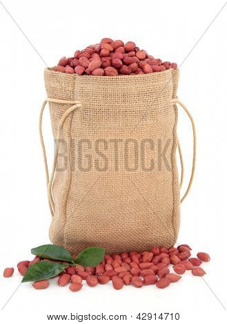 Amendoim redskin em um saco de hessian com raminho de folha sobre fundo branco.