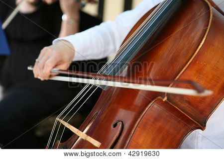 Playing Cello, Hand Close Up