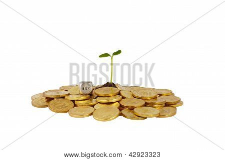 A Studio Shot Of A Bunch Of Coins With A Small Plant Stalk Coming Out Of It And Dice Cube With Word