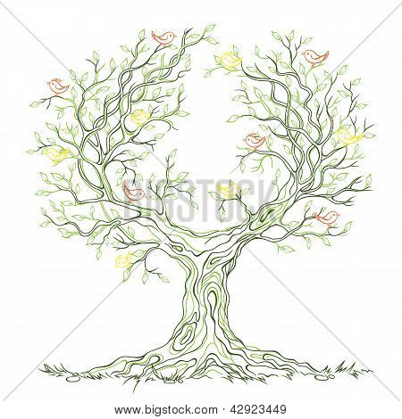 Vector Graphic Green Branchy Tree With Birds