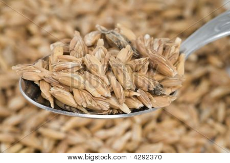 Cereals On Spoon