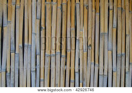 Background texture of natural bamboo in closeup view