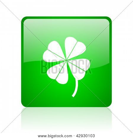 four-leaf clover green square web icon on white background