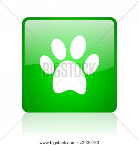 animal footprint green square web icon on white background