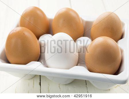 One White Egg Amongst Brown Eggs