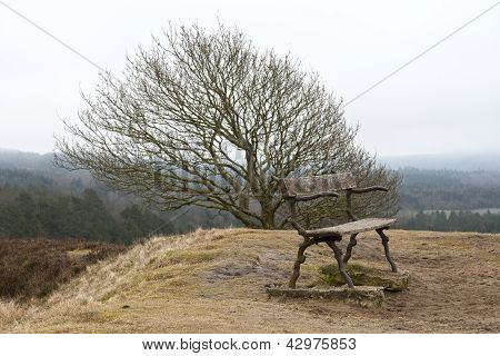 Empty Bench On The Hill