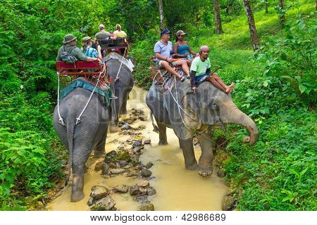 KHAO SOK, THAILAND - NOV 13: Unidentified people on the elephant trekking in Khao Sok National Park. This is one of the biggest tourist attraction in Phang Nga province, Thailand, Nov.13, 2012.