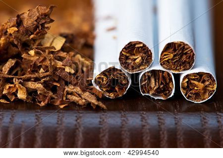 macro of tobacco and cigarettes
