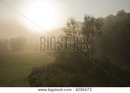 Early Morning Sunrise Through Mist, Rural Scene Landscape