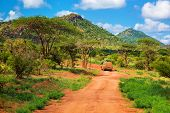 Red ground road and bush with savanna landscape in Africa. Tsavo West, Kenya.