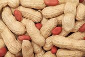 Groundnuts. Background