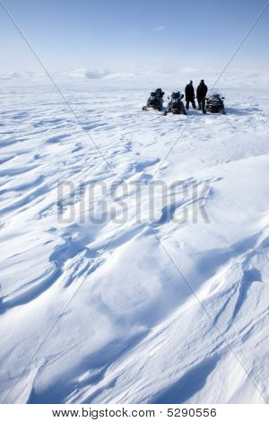 Winter Adventure Scout