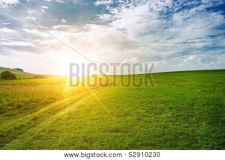 sun near the horizon and green field
