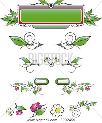 Natural Decorative Elements