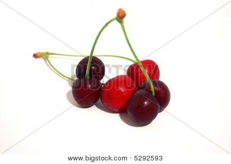 Cherry Früchte