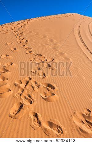 Footprints in Desert in Coral Pink Sand Dunes State Park,Utah