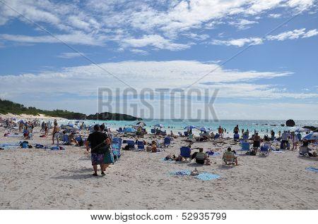Horseshoe Bay Beach in Bermuda