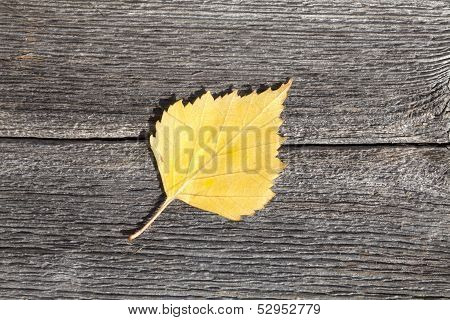 Autumn leaf on a wooden plank.
