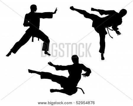 Karate Martial Art Silhouettes