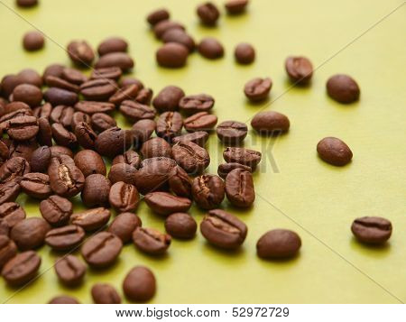 Photo of coffee beans on green background