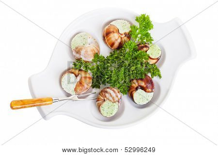 Escargot snails with garlic butter and fresh herbs