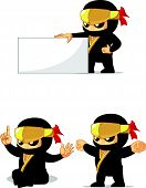Постер, плакат: Ninja Customizable Mascot 13