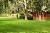 image of gazebo  - wooden gazebo on the green lawn with tree - JPG