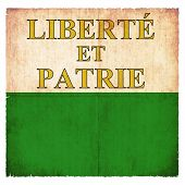 picture of liberte  - Flag of the swiss canton Vaud created in grunge style - JPG