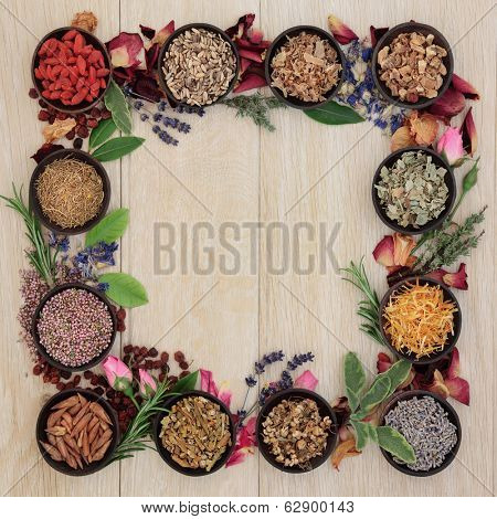 Medicinal herb selection also used in witches magical potions forming a border over oak background.