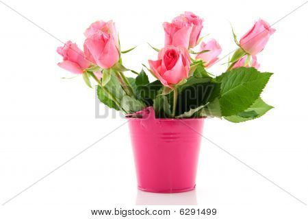 Bouquet Roses In Pink Bucket
