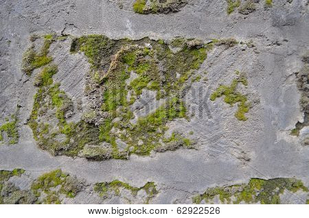 Moss grown stone of gray tuff