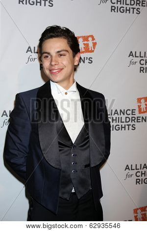 LOS ANGELES - APR 7:  Jake T Austin at the Alliance for Children's Rights' 22st Annual Dinner at Beverly Hilton Hotel on April 7, 2014 in Beverly Hills, CA