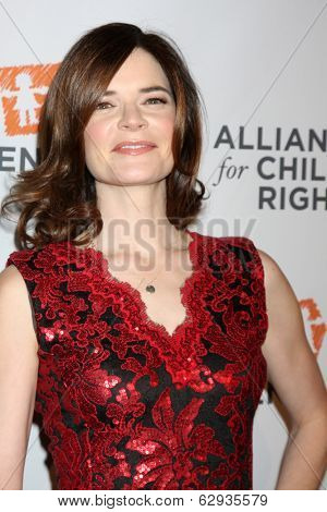 LOS ANGELES - APR 7:  Betsy Brandt at the Alliance for Children's Rights' 22st Annual Dinner at Beverly Hilton Hotel on April 7, 2014 in Beverly Hills, CA