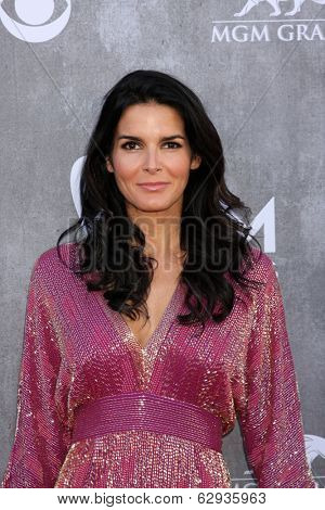 LAS VEGAS - APR 6:  Angie Harmon at the 2014 Academy of Country Music Awards - Arrivals at MGM Grand Garden Arena on April 6, 2014 in Las Vegas, NV