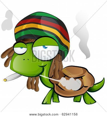 Jamaican Tortoise Cartoon On White Background