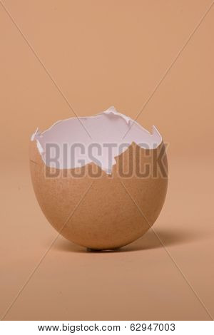 Empty broken brown egg shell balanced upright on a color matched brown background with copyspace