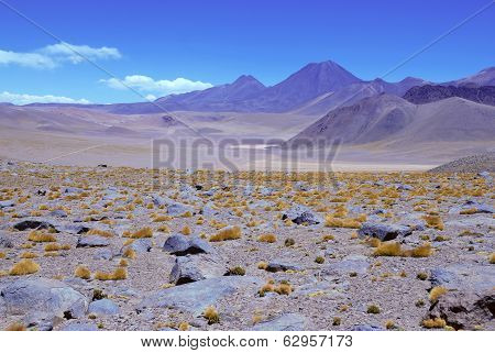 The Barren and Stark Beauty of the Atacama Desert, Chile
