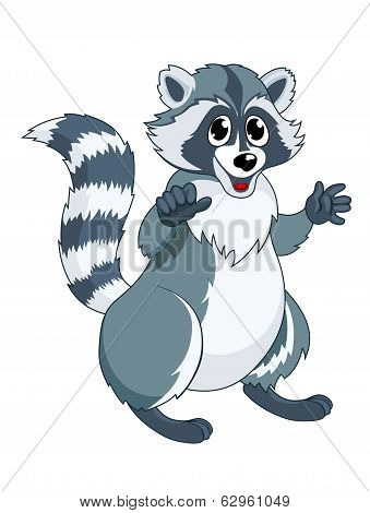 Funny Racoon