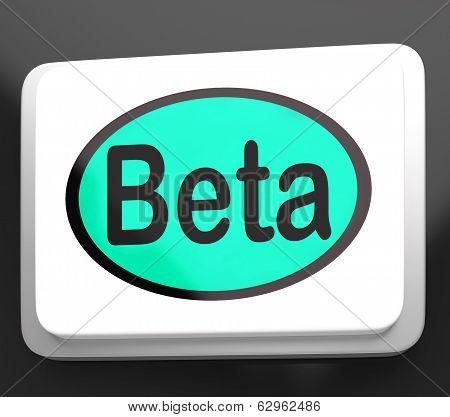 Beta Button Shows Development Or Demo Version