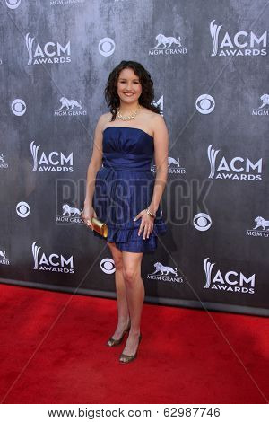 LAS VEGAS - APR 6:  Ashton Shepherd at the 2014 Academy of Country Music Awards - Arrivals at MGM Grand Garden Arena on April 6, 2014 in Las Vegas, NV