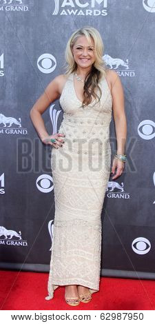 LAS VEGAS - APR 6:  Leah Turner at the 2014 Academy of Country Music Awards - Arrivals at MGM Grand Garden Arena on April 6, 2014 in Las Vegas, NV