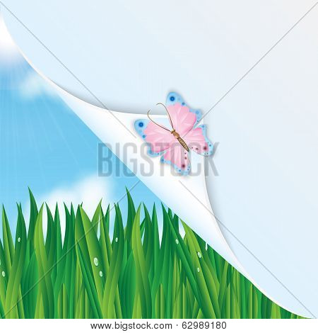 Colorful Butterfly On A Background Of Green Grass And Blue Sky And Space For Your Text