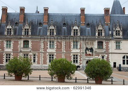 Castle of Blois. the Gothic wing of Louis XII. Loire Valley France