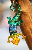 glass gecko