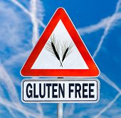 picture of wheat-free  - Gluten Free traffic sign with a black silhouette of ears of wheat on a triangular sign with the text below denoting food which is safe for consumption by coeliacs or people with gluten intolerance - JPG