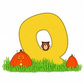 Alphabet Pumpkin Patch Q